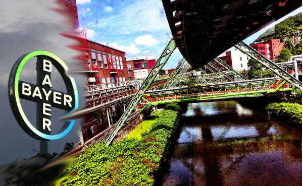 Becas de la Fundacion Bayer