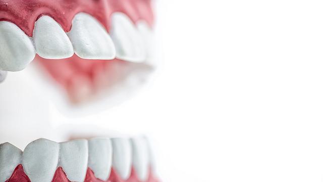 Estudiar Odontología en Alemania